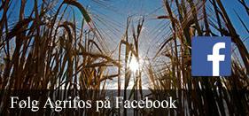 Følg Agrifos på Facebook