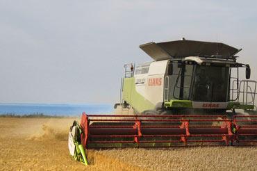 Bliv landbrugselev