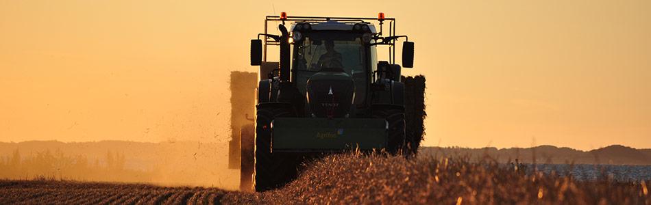 Stort- og effektivt landbrug